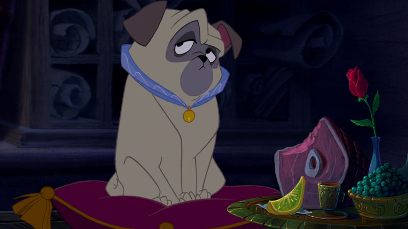 Funday - We Were Obsessed With Percy From Pocahontas Before Pugs Were Cool! - Thumb